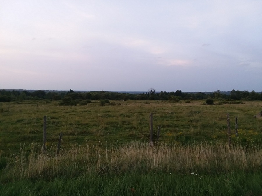 pasture and long view sep 5