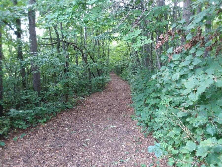 sept 12 kip trail walk