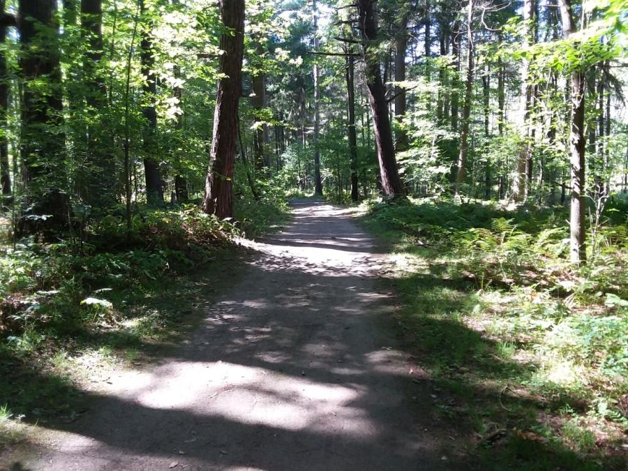 sept 13 trail