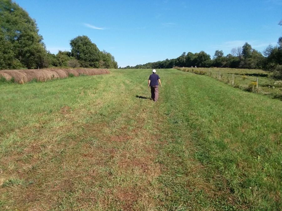 sept 7 endless field