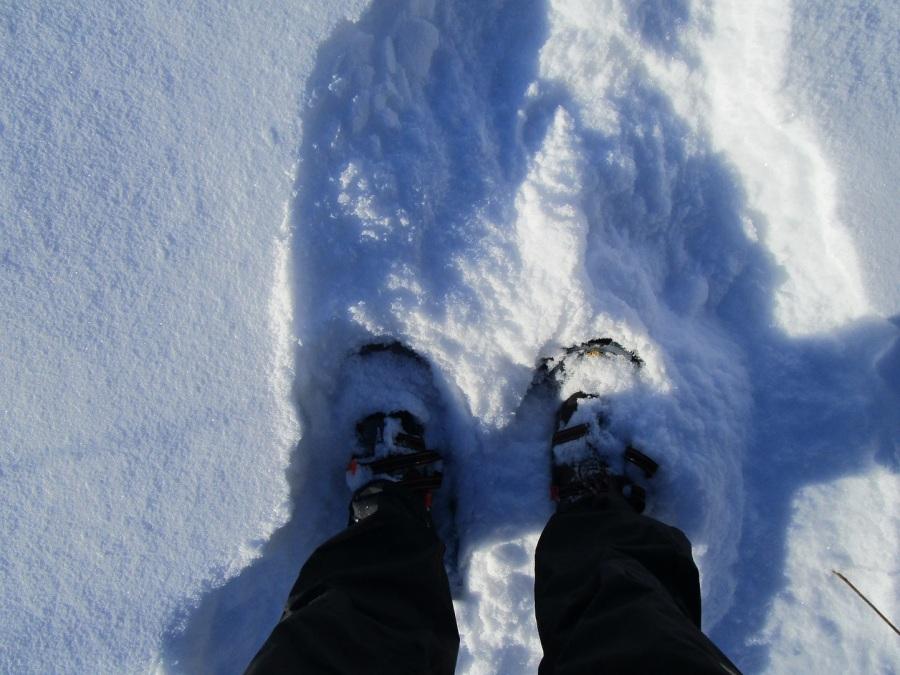 jan 13 snowshoes